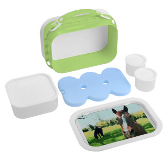 Watercolor Horses Lunchbox