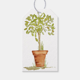 Watercolor Topiary Tree Gift Tags