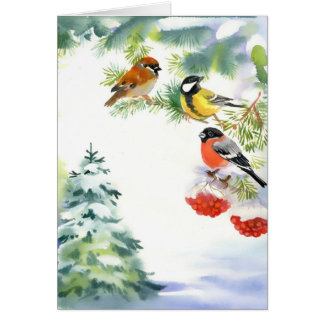 Watercolor Winter Birds Greeting Card