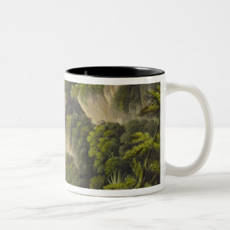 Waterfall at Shanklin, from 'The Isle of Wight Ill Mugs