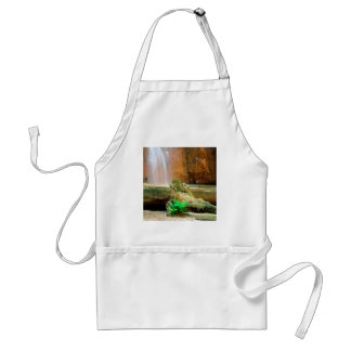 Waterfall Berry Big Basin Redwoods State Park Apron