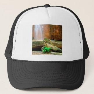 Waterfall Berry Big Basin Redwoods State Park Trucker Hat