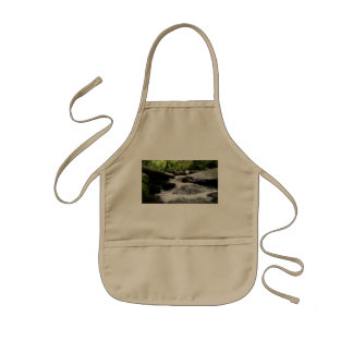 Waterfall Cascades Great Smoky Mountains Kids Apron