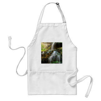 Waterfall Cathedral West Virginia Aprons