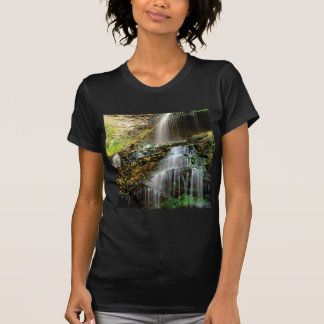 Waterfall Cathedral West Virginia Tshirt