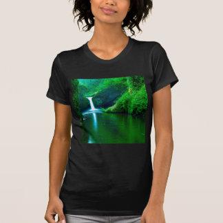 Waterfall Eagle Wilderness Area Columbia T Shirt