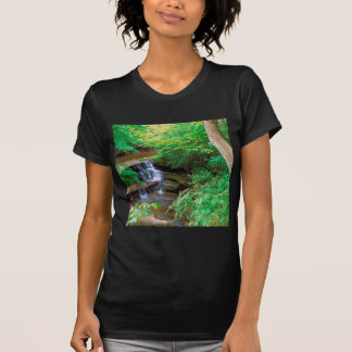 Waterfall In Starved Rock State Park Illinois T-shirt