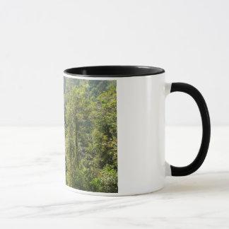 Waterfall in the nature mug