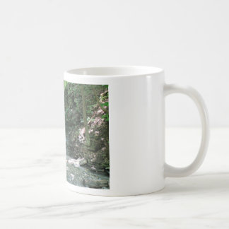 Waterfall in Woods Mugs