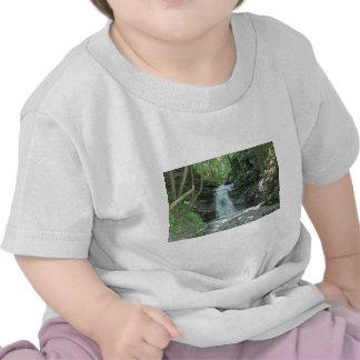 Waterfall in Woods Tee Shirt
