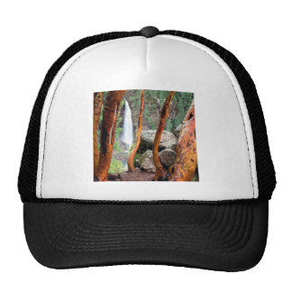 Waterfall Madrone Mill Recreation Area Mesh Hats
