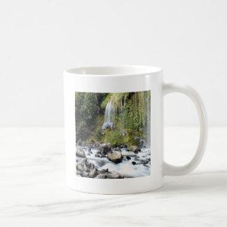 Waterfall Mossbrae Falls Coffee Mugs