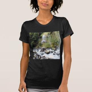 Waterfall Mossbrae Falls Tees
