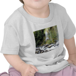 Waterfall Mossbrae Falls Shirt