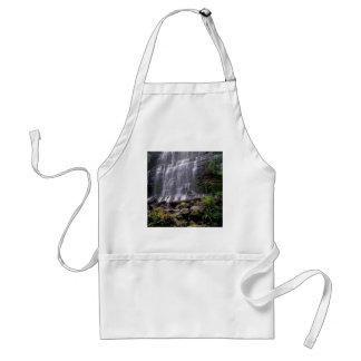 Waterfall Mount Field Park Tasmania Australia Apron