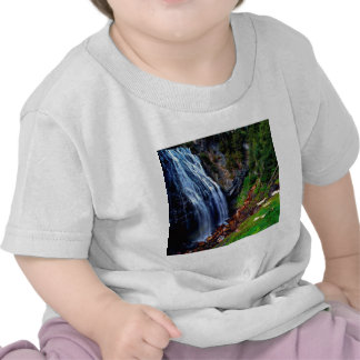Waterfall Mount Rainier Tee Shirts