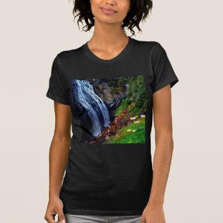 Waterfall Mount Rainier T Shirts