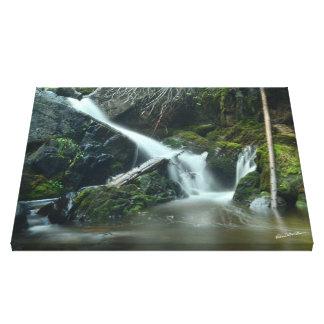Waterfall near Sage Hen Reservoir, ID - CSC_2638b Canvas Print