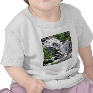 Waterfall Paradise Mount Rainier Park Tee Shirt