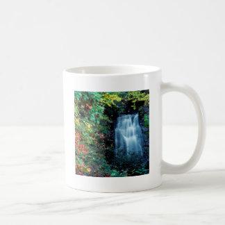 Waterfall Park Coffee Mug