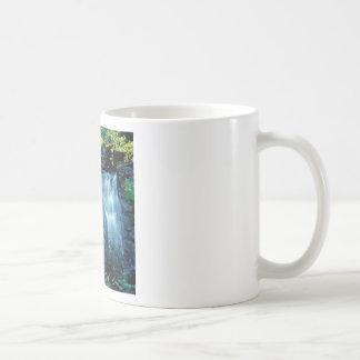 Waterfall Park Coffee Mugs