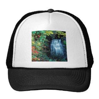 Waterfall Park Mesh Hats