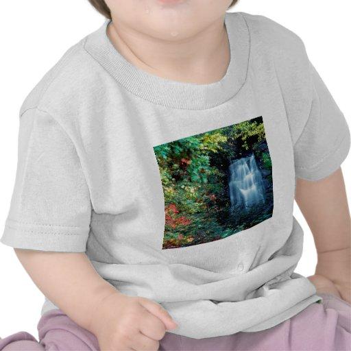 Waterfall Park Tshirts