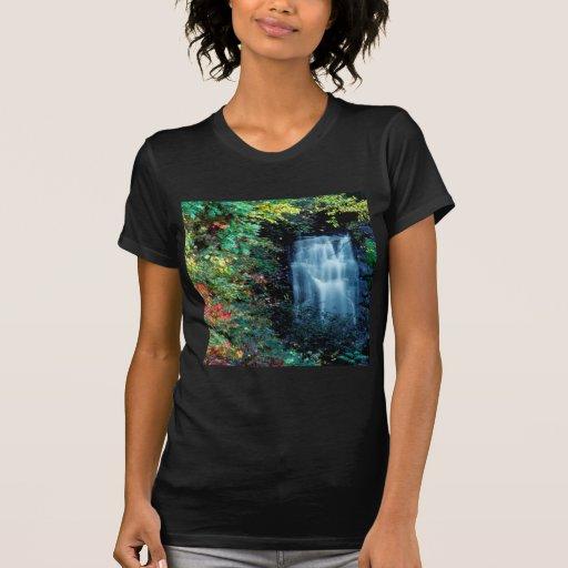 Waterfall Park Shirt
