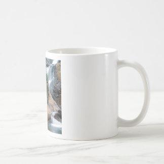 Waterfall Peaceful Colorado Coffee Mug