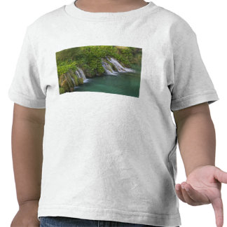 Waterfall, Plitvice Lakes National Park and T Shirt