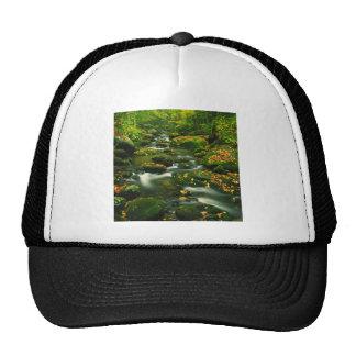Waterfall Roaring Fork Smoky Mountian Trucker Hats