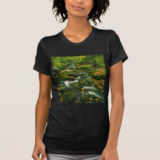Waterfall Roaring Fork Smoky Mountian T-shirts