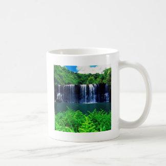 Waterfall Secluded Kauai Mugs