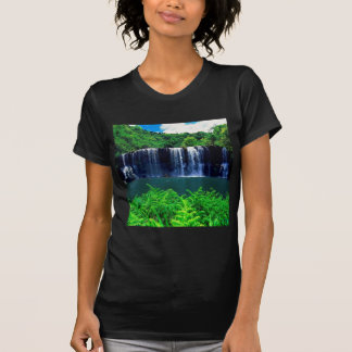Waterfall Secluded Kauai T Shirts