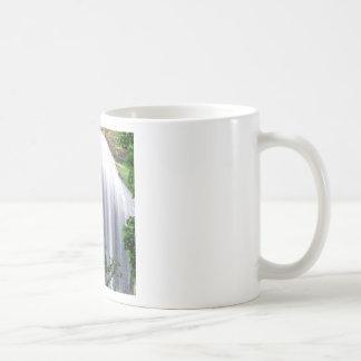 Waterfall Silver Falls Mugs