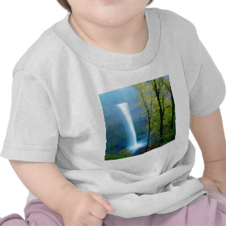 Waterfall South Silver State Park Tee Shirt