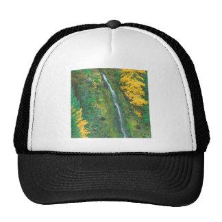 Waterfall Terwilliger Hot Springs Fall Mesh Hat