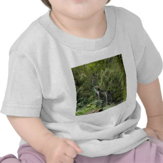 Waterfall Through The Under Growth Tee Shirts