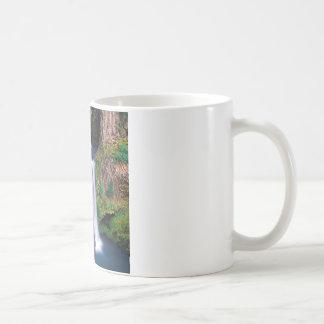 Waterfall Toketee Falls Coffee Mugs