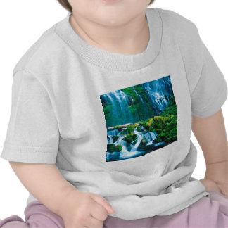 Waterfall Twins Proxy Willamette Tee Shirts