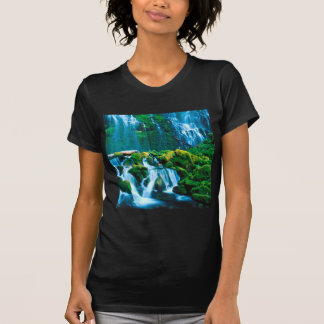 Waterfall Twins Proxy Willamette T-shirts