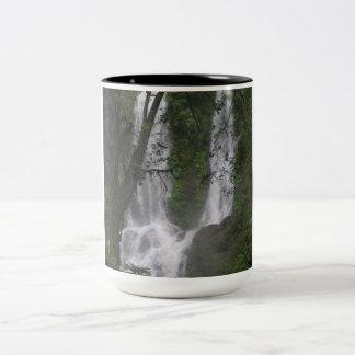 waterfall Two-Tone coffee mug
