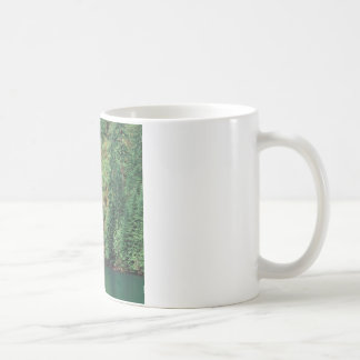 Waterfall Willamette Mug