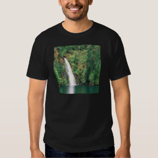 Waterfall Willamette Tshirts