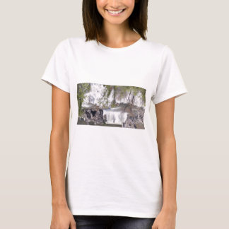 Waterfall with Branches T-Shirt