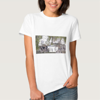 Waterfall with Branches T-shirts