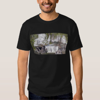 Waterfall with Branches Tees