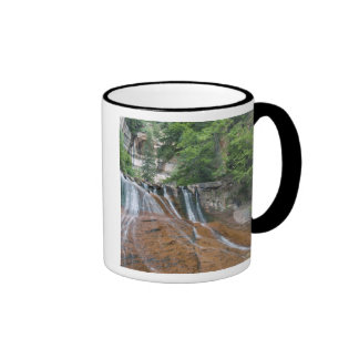 Waterfall, Zion National Park, Utah, USA Ringer Mug