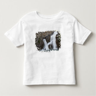 Waterfalls Coming Out Of A Rock Cliff Toddler T-Shirt