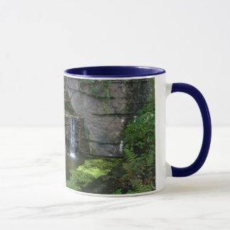 waterfalls mug